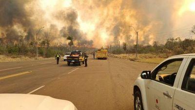 Incendios afectaron más de 9 mil hectáreas de parques nacionales en el norte