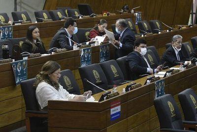 """Diputados define hoy ley que declara la """"muerte civil"""" de los electores"""