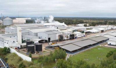 Concepción compra granja porcina y se suma como accionista al frigorífico Upisa
