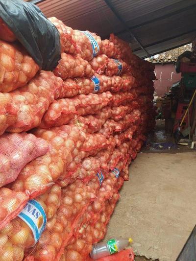 UIC incautó más de 50 toneladas de productos frutihortícolas – Prensa 5