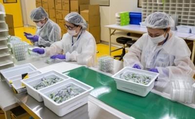 Prueban vacuna taiwanesa en Fundación Tesãi