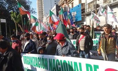 """Teodolina Villalba: """"Quieren criminalizar la lucha por la tierra"""""""