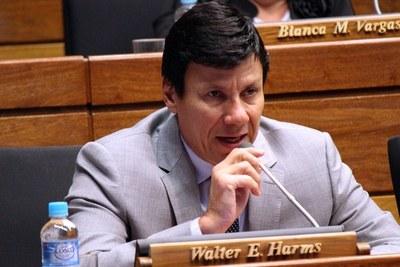 Walter Harms, diputado de ANR: 'La interpelación ayudará a echar luz a lo acontecido entre Fernández y Arévalo'
