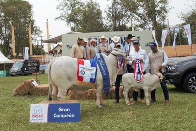 En la pista Brahman, Ganadera El Fogón logró la Gran Campeona de la Expo Ganadera
