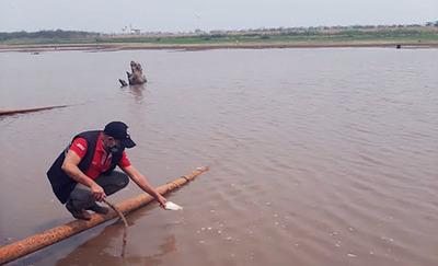 Bajante del río marca el récord mínimo histórico