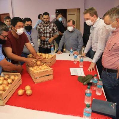 Productores de La Colmena acuerdan comercialización directa de cebolla en supermercados