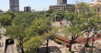 La Nación / Con stands, danza, teatro y obsequios celebrarán el Día del Pulmón en la Plaza de la Democracia