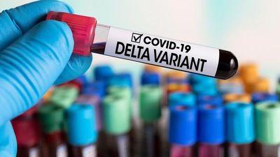 Covid-19: Hay 70 nuevos casos de la variante delta y un fallecido