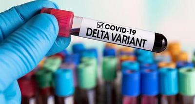 Reportan 70 nuevos casos de variante Delta en Paraguay – Prensa 5