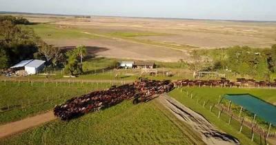 La Nación / El Paraíso Verde, emprendimiento que sigue cambiando el rostro de Caazapá