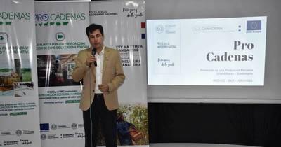 La Nación / Buscan apoyar a sectores mediante proyecto Procadenas