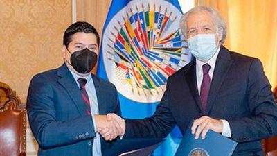 Misión electoral de la OEA observará las municipales