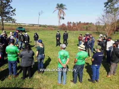 Realizan jornada de reforestación de especies forestales en Yguazú