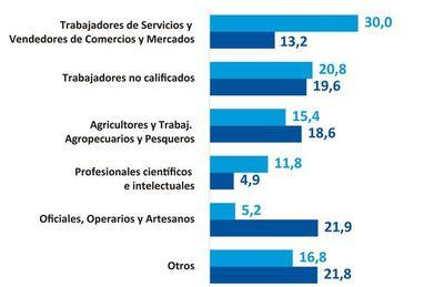 Situación del empleo, nivel de informalidad y cobertura social en pandemia
