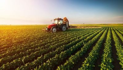 Expertos nacionales e internacionales debatirán en el III Congreso Internacional de Agronegocios
