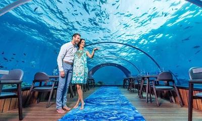 Cenando en las profundidades del océano