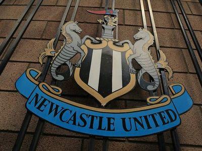 Un fondo saudita compra el Newcastle