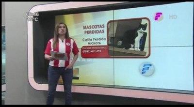 """María Teresa busca a """"Michota"""" (video)"""