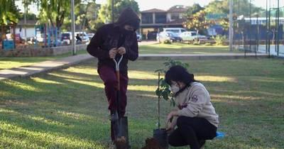 """La Nación / Invitan al """"delivery de árboles"""" para apoyar la campaña #SomosH2O"""