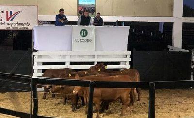 El Rodeo vendió 70 reproductores de Rural Ganadera por más de Gs. 1.625 millones