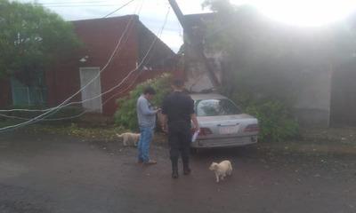 Ebrio al volante se lleva por delante una columna de la ANDE en San José de los Arroyos