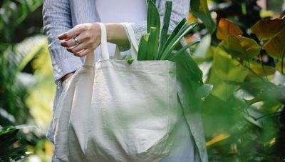 Estudio revela que pandemia agudizó sentido de responsabilidad ambiental y social de consumidores