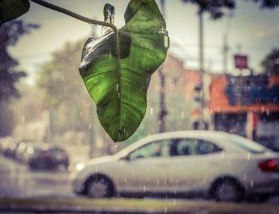 Mitad de semana con clima caluroso y tormentas eléctricas para el final de la tarde