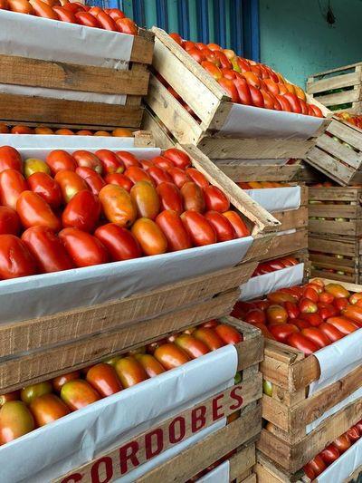 Otro aumentazo más: tomate subirá nuevamente y podría llegar a G. 20.000 por kilo