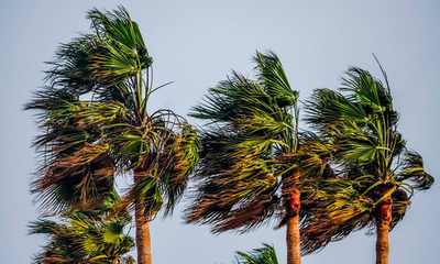Anuncian ráfagas de viento de 120 km/h y tormentas eléctricas para este miércoles