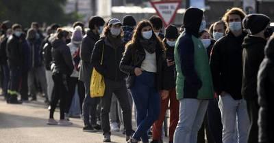 La Nación / La tasa de nacimientos se desploma en Uruguay