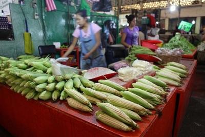 Supremo de México mantiene prohibición de siembra de maíz transgénico en país