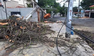 Basura, árboles caídos y zonas sin energía deja fuerte temporal