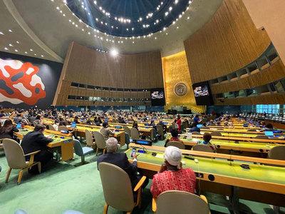 Paraguay ingresa al Consejo de Derechos Humanos de las Naciones Unidas