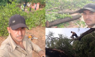Coronel Oviedo: Ofrece servicio gratuito de poda de árboles pos temporal