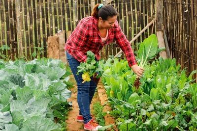 Ministerio de Trabajo capacitó a más de 20.000 mujeres rurales durante este año