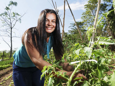 Lanzan ARA, iniciativa para valorizar la agricultura familiar paraguaya
