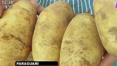 Bajas ventas desesperan a productores de papas y cebollas