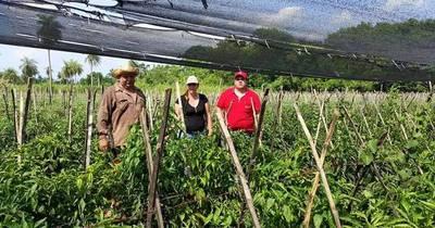 La Nación / Instan a consumidores a contribuir con ODS y optar por productos de la agricultura familiar