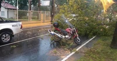La Nación / Instan a la ciudadanía a no solicitar servicio de delivery durante los fuertes temporales