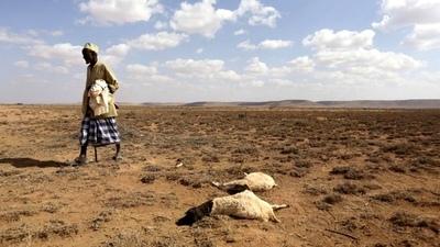 El cambio climático amenaza la supervivencia de millones de africanos