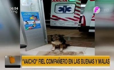 """Fiel """"Vaicho"""" aguarda alta de mujer en hospital"""