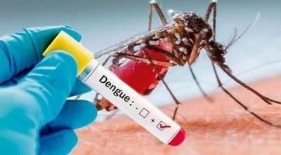 Dengue: Alertan que notificaciones se registran en todos los departamentos
