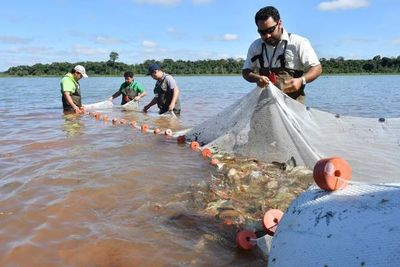 Veda pesquera regirá desde noviembre