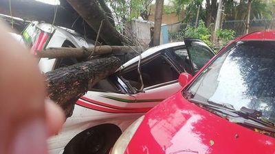 Fuerte temporal provoca destrozos y deja a unos 30.000 usuarios sin energía eléctrica en Alto Paraná